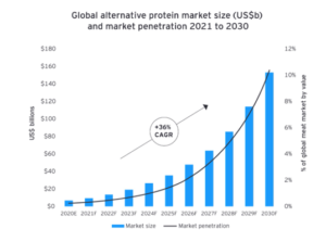 alternative protein